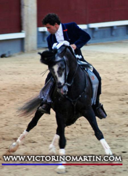 Foto del torero Sergio Vegas