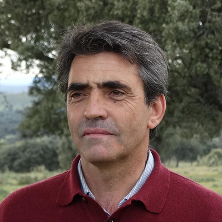 Victorino Martín García   Victorino Martín