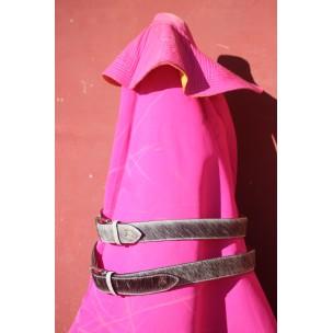 Cinturón de Toro